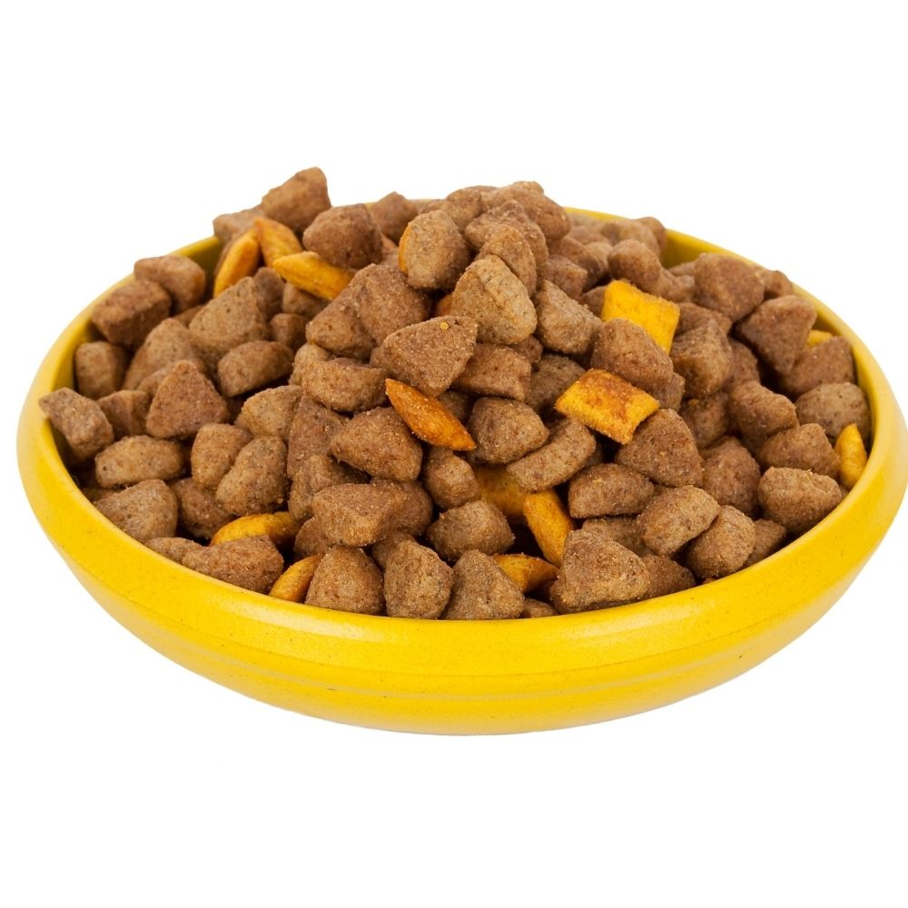 trockenfutter napf hund