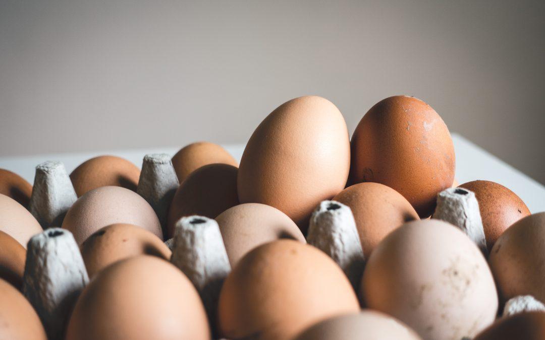 Lamm mit Spinat, Ei, Kartoffeln und Kürbiskernen